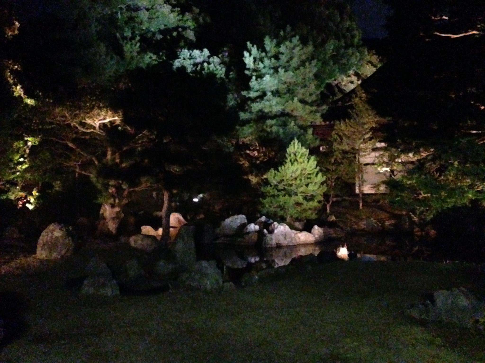 圓徳院のライトアップin2015に行って北庭で落ち着こう