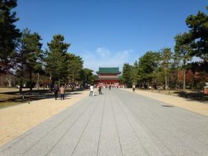 平野神社の桜in2016のライトアップは?見頃とアクセス方法は要チェック