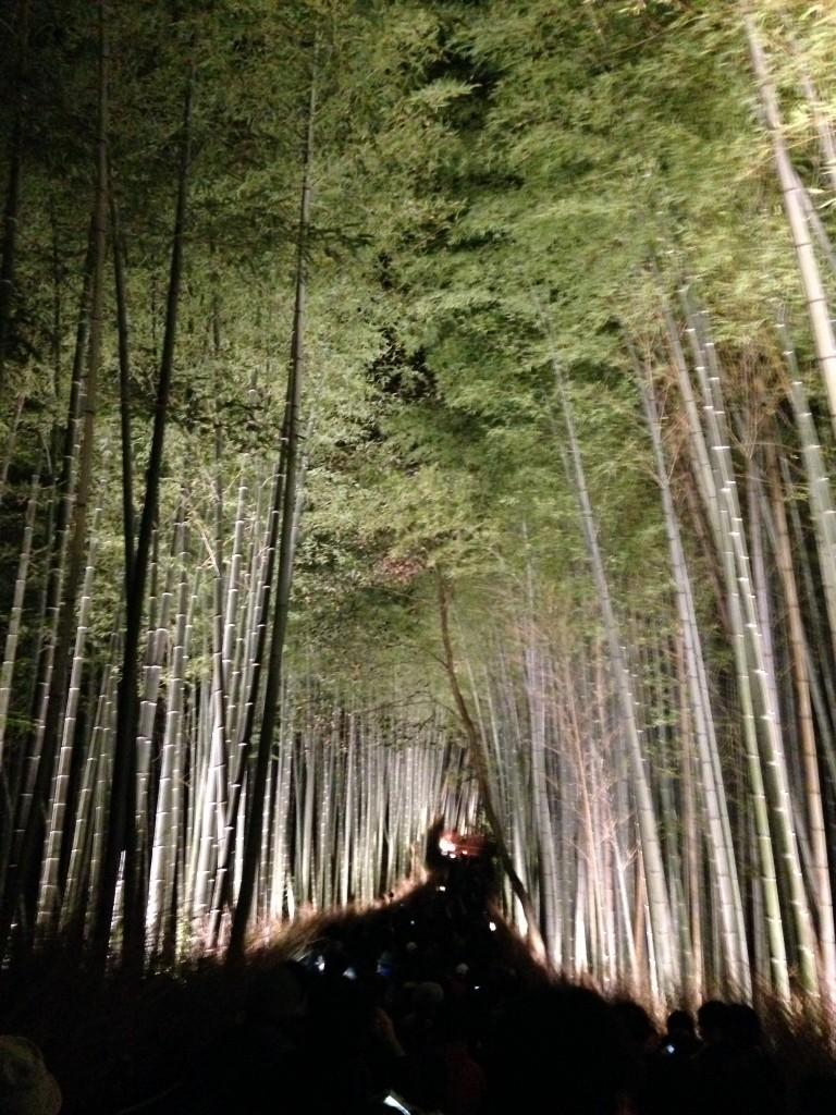 嵐山花灯路の感想!!竹林の混雑が凄すぎて渡月橋はあきらめた…