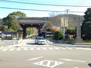 円山公園へのアクセス‼京都駅からはバスがオススメ!電車はNG