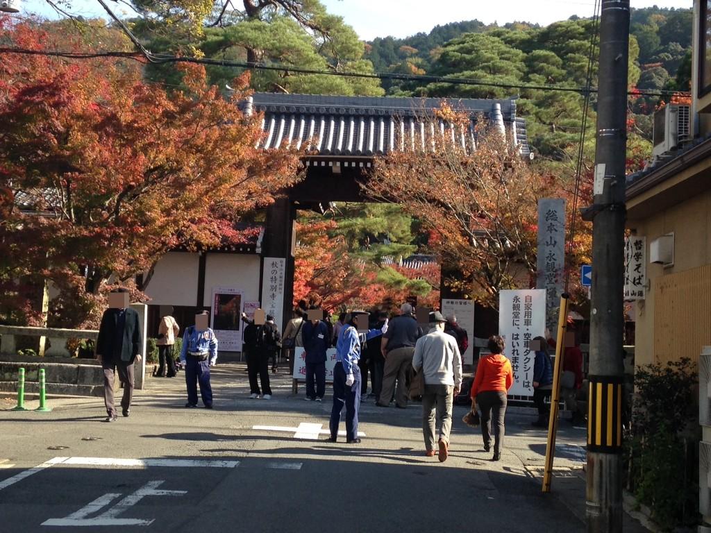 永観堂へのアクセス‼京都駅からはバス、車?オススメは電車!