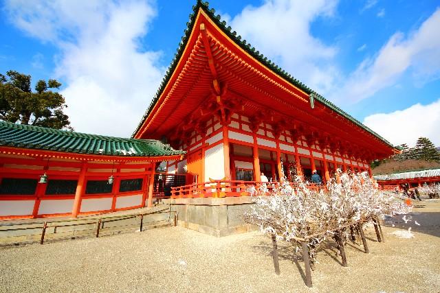 平安神宮の桜の見ごろは?2017年の開花は平年並み!