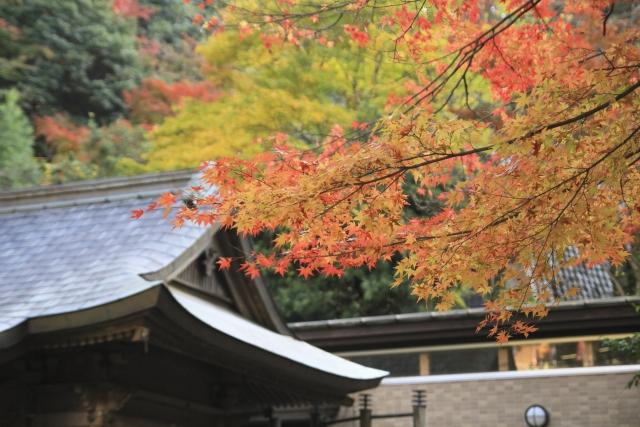 清水寺の紅葉ライトアップ情報in2016!清水の舞台を撮影するのはダメゼッタイ⁉